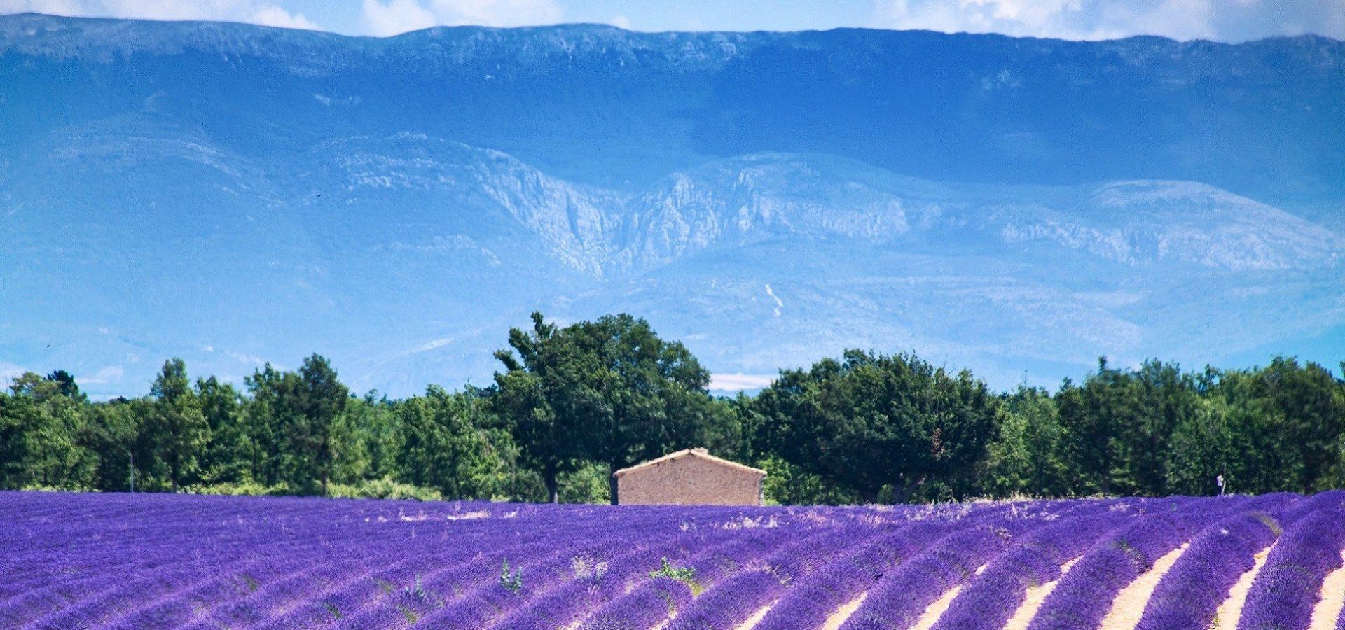 Krenite na putovanje u najljepšu regiju Francuske zvanu Provansa.