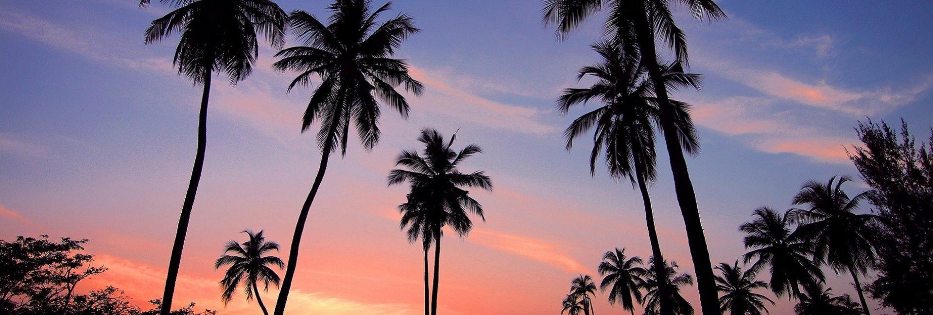 Putovanje na drevni i egzotični otok Šri Lanka bogat prekrasnim plažama i raskošnom kuhinjom.