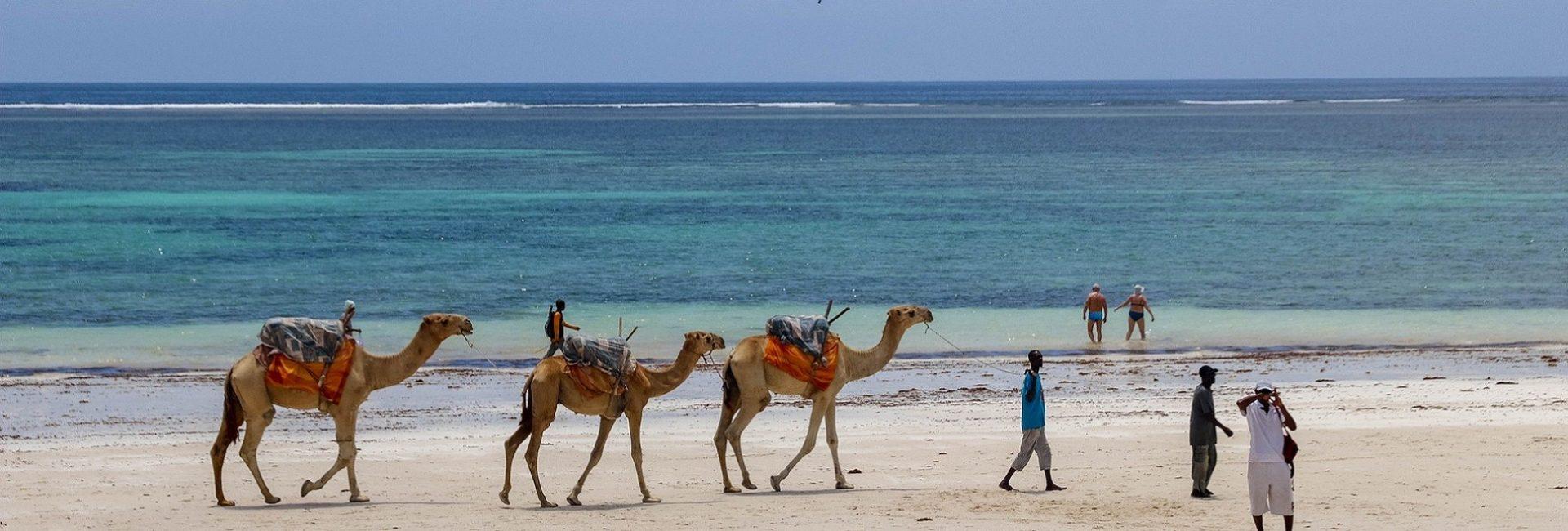 Krenite na putovanje i odmorite se na plažama Diani beach u predivnoj zemlji zvanoj Kenija.