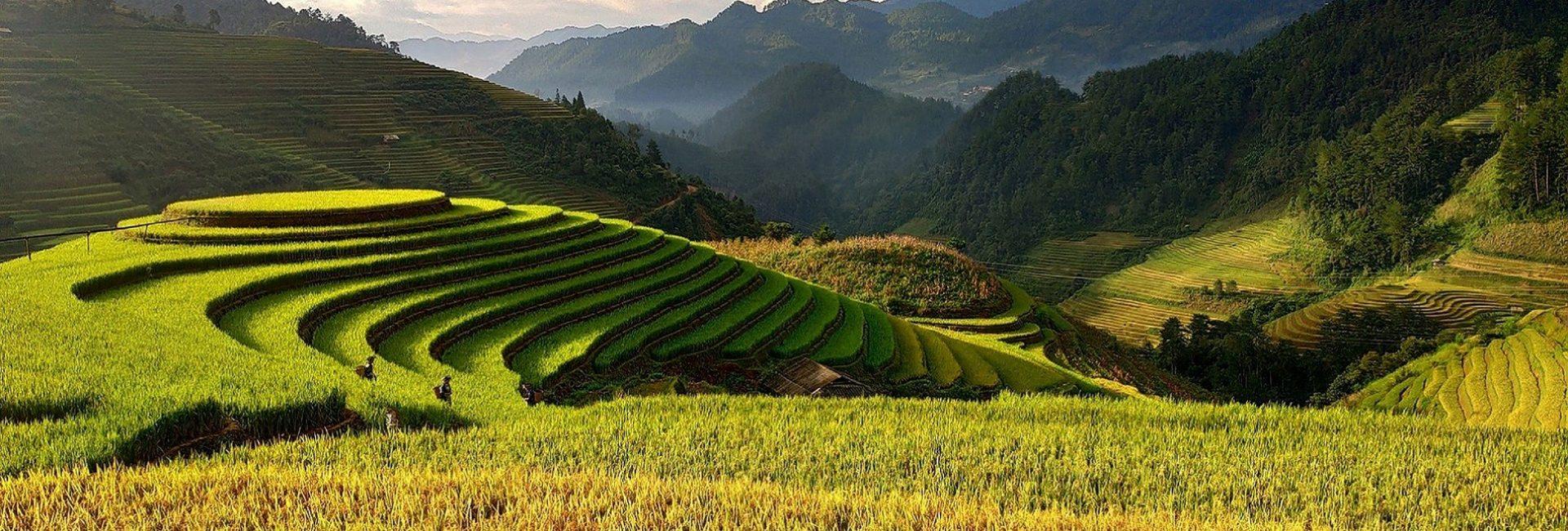 Putovanje u Vijetnam nudi uzbuđenje na svakom koraku.